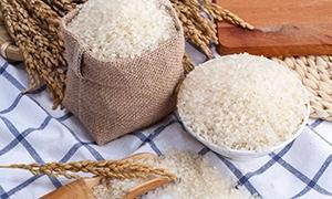 大米的营养价值剖析?