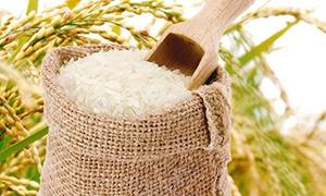 厂家批发大米时注意要点有哪些
